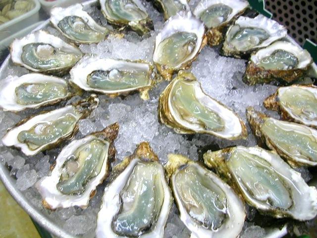 oyster-plateau-lyon1