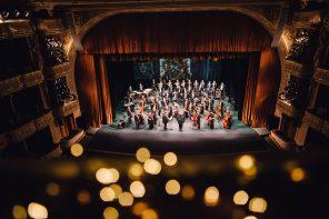 Новогодние концерты от Svitlo Concert