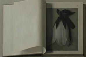 Prada открывают выставку работ Лю Е