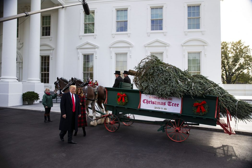 President Trump And First Lady Take Part In White House Christmas Tree Delivery