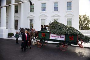 Подготовка к Рождеству в Белом доме